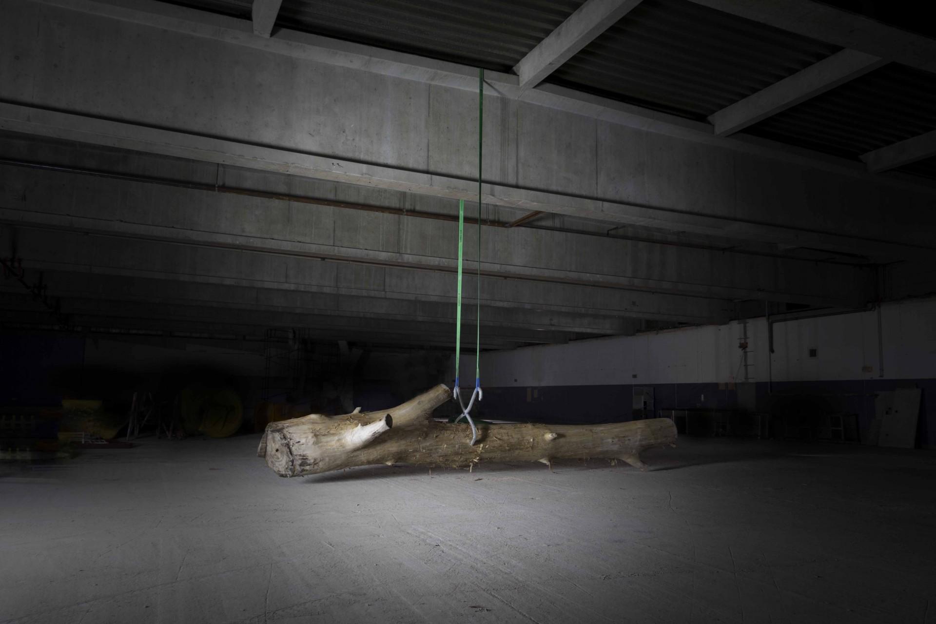 Nino Maaskola Abschied von der Erde, Baumstamm